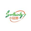 小轻婷 SORTHINTY商标转让/购买